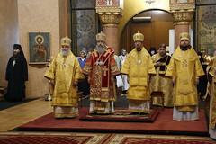 Конференция (II) в Санкт-Петербурге (4) 10.08.2017