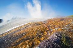 Biofilm (Tiara Rae Photography) Tags: yellowstone national park biofilm bacteria microorganisms nature steam wyoming