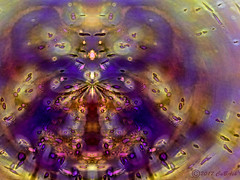 Dream time (CaBAsk! on and off. Thank U for the visit ♥) Tags: abstract art surreal lumia digital manipulation honey circle symmetry dreaming fantasy expression imagination fairytale yellow wings bug wierd purple rabbithole joy fun