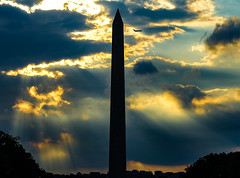 2017.09.17 DC People and Places Washington, DC USA 8845