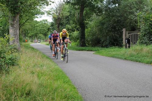 Omloop Vlaamse gewesten (264)