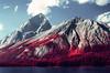 32620015 (kgartner) Tags: kodakeir kodakeirinfrared kodak film infrared