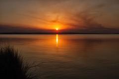 tramonto sullo stagno (mat56.) Tags: tramonto sunset sun sole acqua water stagno pond nuvole nubi clouds riflessi reflection cabras oristano sardegna antonio romei mat56 paesaggi paesaggio landscapes landscape