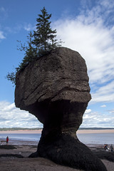 Hopewell Rocks (Stephen P. Johnson) Tags: newbrunswick canada places hopewellrocks