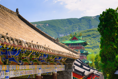 Shaolin Temple - Roof and Nature