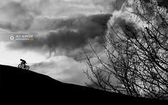 Stop doubting yourself, word hard and make it happen (Rui Almeida Photography) Tags: wallpaper background silhoeta silhouette backlighting contraluz backlight fineart creative nightshoot shadows romantic loveliness illusion danger winter rain cold portfolio shadow silhoetas blackandwhite bw nb minimalisme elegant poeticimage grayscale minimalist dreamcatcher life lightanddark fine art beauty photography beautyphotography conceptual happyness sea artwork artistic wallprint frame digital dramatic drama ruialmeida bicycle
