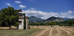 Le charme de la Drôme (Thierry.Vaye) Tags: die campagne drôme paille bottes maisonnette