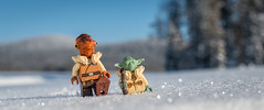 Fun in the Snow (Reiterlied) Tags: 18 35mm ackbar d500 dslr lego legography lens minifig minifigure nikon photography prime reiterlied snow stuckinplastic toy winter yoda