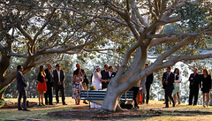 The wedding (geemuses) Tags: littlemanly sydney nsw nature northernbeaches view landscape wedding marriage street colour color candid sttreetphotography people intimate man woman trees