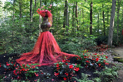 Lady of the Forest (emerge13) Tags: lassomptionquébeccanada forêt forest nature trees arbres