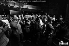 2017 Bosuil-Het publiek bij Back To Back en The Lachy Doley Group 2-ZW