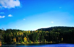 Lovely day today ☀ (evakongshavn) Tags: lake water waterscape lakes scenery scenic beautyinnature natur nature naturnature naturbilder naturephotography naturelovers naturaleza naturphotography landscapephotography landscapelovers landscape landschaft landskap visitnorway norge norway