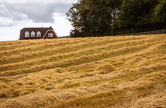 Ireland - Belvelly (Marcial Bernabeu) Tags: marcial bernabeu bernabéu ireland irlanda belvelly house casa farm granja campo country