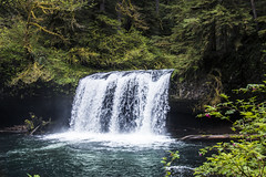 Butte Creek Falls, Oregon (lessa.clayton) Tags: buttecreekfalls oregon