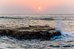 Hazy Sunrise Seascape with Rocks (Merrillie) Tags: daybreak rockshelf sand landscape northavocabeach headland avocabeach sunrise newsouthwales rocks centralcoast nsw earlymornings beach scenery sea rocky dawn seascape nature outdoors waterscape rockplatform coast water australia