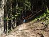 2017-08-10-27_Peaks_of_the_Balkans-398 (Engarrista.com) Tags: albània alpsdinàrics balcans peaksofthebalkans theth valbonë caminada caminades trekking