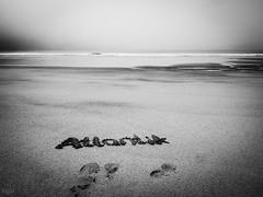 Atlantic (-BigM-) Tags: irland ireland southwest südwesten roundtrip rundreise strand beach atlantik atlantic