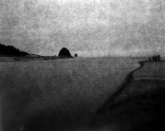 Strange but good company (Zeb Andrews) Tags: linhoftechnikaiv 4x5 largeformat cannonbeach film filmphotography tiltshift rolleirpx400 ooops mistake oregoncoast oregon pacificnorthwest filmisnotdead mistakentexturelayers coast beach ocean landscape blackwhite