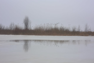 thaw II