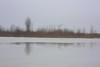 thaw II (Mindaugas Buivydas) Tags: lietuva lithuania color winter february sadnature minimal minimalism thaw ice kuršiųmarios curonianlagoon reflection mindaugasbuivydas memelland