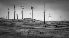 "Goldendale Turbines <a style=""margin-left:10px; font-size:0.8em;"" href=""http://www.flickr.com/photos/106120005@N04/37358995275/"" target=""_blank"">@flickr</a>"