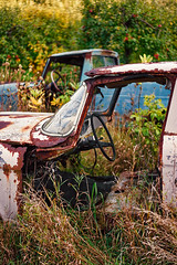Farm Cars (Mister Joe) Tags: cars trucks rusted outdoors nature abandoned rust farm wild oldcars decay metal forgotten abandonedcars derelict weeds overgrown michigan puremichigan car truck empty abandonedtruck landscape vintage rustic field cracked windshield frame