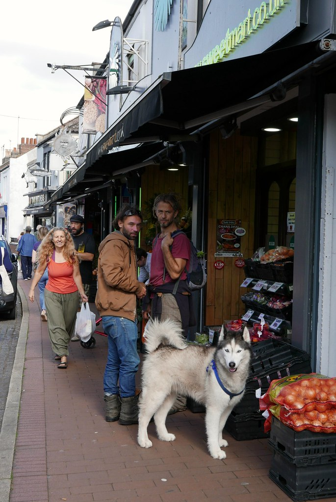Urban Wolf Dog Food Uk