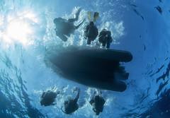 0801a (KnyazevDA) Tags: disability disabled diver diving undersea padi underwater owd redsea buddy handicapped aowd egypt sea wheelchair amputee paraplegia paraplegic travel scuba deptherapy liveaboard safari