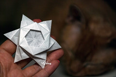 Gwidon Star (talina_78) Tags: origami star hexagon