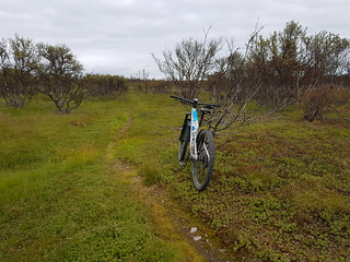 Trailbike at the trail