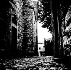 Des morceaux de Sud Argentique (photosreggar) Tags: minolta 6x6 filmcamera argentique carcassonne sud vacances square squareformat carré rikkor
