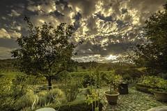 Figline, Toscana, Italy (Martina Stoltz) Tags: italien toskana toscana italy natur landschaft landscape nature instagram instagood urlaub sommer summer holiday summervibes