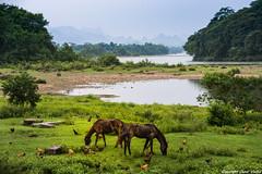 Por el interior de China (cvielba) Tags: puebloconencanto china daxu guilin rio