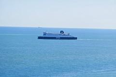 P1010146 (smith.rodney74) Tags: birdsofafeather seagulls bluesky bluesea bowwave headingout