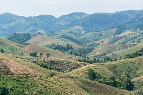 wiang kaen district - thailande 74