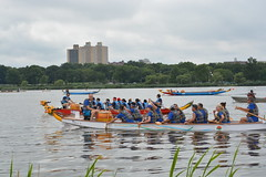 """20170812.Hong Kong Dragon Boat Festival in New York • <a style=""""font-size:0.8em;"""" href=""""http://www.flickr.com/photos/129440993@N08/36034567284/"""" target=""""_blank"""">View on Flickr</a>"""