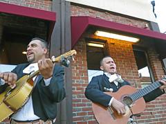 MaldenMariachis@ElPotro (fotosqrrl) Tags: malden massachusetts streetphotography urban highlandavenue elpotro mexicanrestaurant mariachis musicians guitar singing