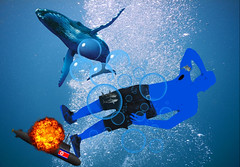 Wallpaper Mutant Monte Blue Downing a Sub at Lunchtime 8 29 2017 (Monte Mendoza) Tags: montemendoza mutant mutation whale bluewhale shark dolphin submarine northkorea swim swimming underwater explosion