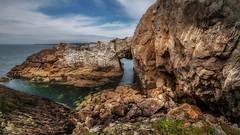 The white arch (Einir Wyn Leigh) Tags: coastline anglesey wales rocks summer walking rural foliage horizon love nikon cymru landscape