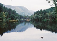 CNV00028 (SB_McAllister) Tags: fujica fujinon stx1 glencoe scotland filmisntdead lomography film 50mm