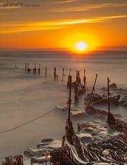 Neptune's Washing Line (Pureo) Tags: boulmer northumberland fence sun sunrise seaweed neptune rocks le longexposure canon 6d lee leefilters littlestopper ndgrad