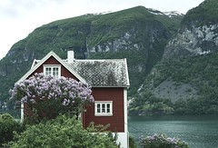Norway Summer 2017 - Aurland. (amanecer334) Tags: home house fjord norway norwegian sea mountain nature amazing magic beautiful toned tree flower red landscape scandinavia europe summer architecture aurland shore