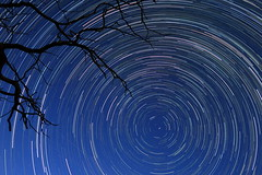 Polaris and Circumpolar Rotation in two hours... (JPP04) Tags: circumpolar circumpolaire rotation polaris star provence perseid