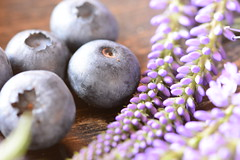 Berries and flowers (victoriameyo) Tags: berries flowers life still blueberries violet macro closeup macromondays stayinghealthy
