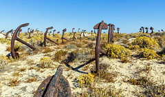Praia do Barril, Tavira (touflou) Tags: portugal algarve praiadobarril tavira ancres dunes sable