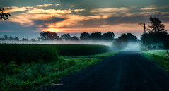 Saturday Morning Solitude (tquist24) Tags: goshen hdr indiana nikon nikond5300 clouds corn country crops dirtroad farm geotagged mist misty morning rural sky sunrise tree trees unitedstates