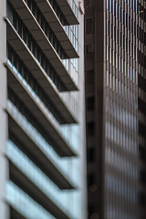 Architectural Lines (Jovan Jimenez) Tags: architectural lines line sony ilce 6500 a6500 alpha nikon seriese series e eseries lens manual focus bokeh 100mm f28 chicago building city vintage abstract window tilt shift tiltshift optical mirrorless dof