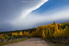 Glowing Aspens Below a Dramatic Mountain Wave Cloud - Park County, Colorado (Bridget Calip - Alluring Images) Tags: alluringimagescolorado autumn bridgetcalip cirrusclouds colorado fallcolor mountainwavecloud nationalforest nationalregisterofhistoricplaces parkcounty rockymountains sanisabelnationalforest allrightsreserved aspentrees backroads blueskies clouds dirtroads fenceline lenticularclouds miningdistrict