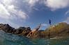 Aruba45 (ail33n_d3vlin) Tags: winner gopro aruba travel travelphotography traveling aileendevlin travelphotographer caribbean caribbeanocean caribbeansea beach water snorkeling goprophotography travelblog clearwaters