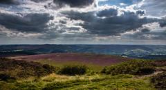 the purple field (Phil-Gregory) Tags: nikon d7200 tokina 1120mm 1120mmf28 1120mmproatx11 national nationalpark naturalworld naturephotography heather purple clouds scenicsnotjustlandscapes